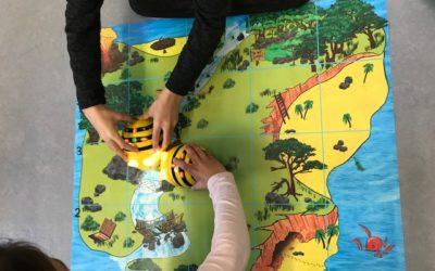 Spielerisch das Programmieren lernen mit Bienchen
